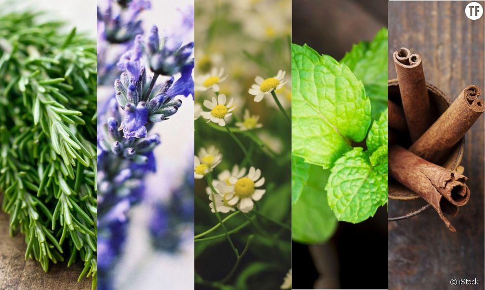 5 remèdes naturels pour lutter contre le mal de tête
