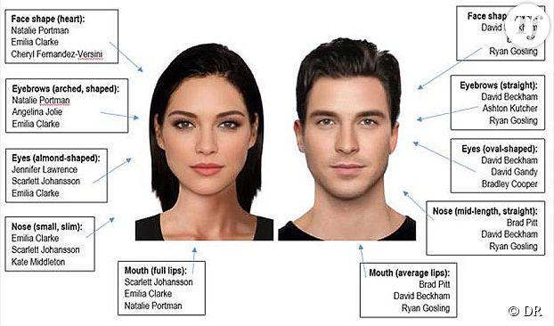 """Les visages """"parfaits"""" empruntent les traits de nombreuses célébrités."""