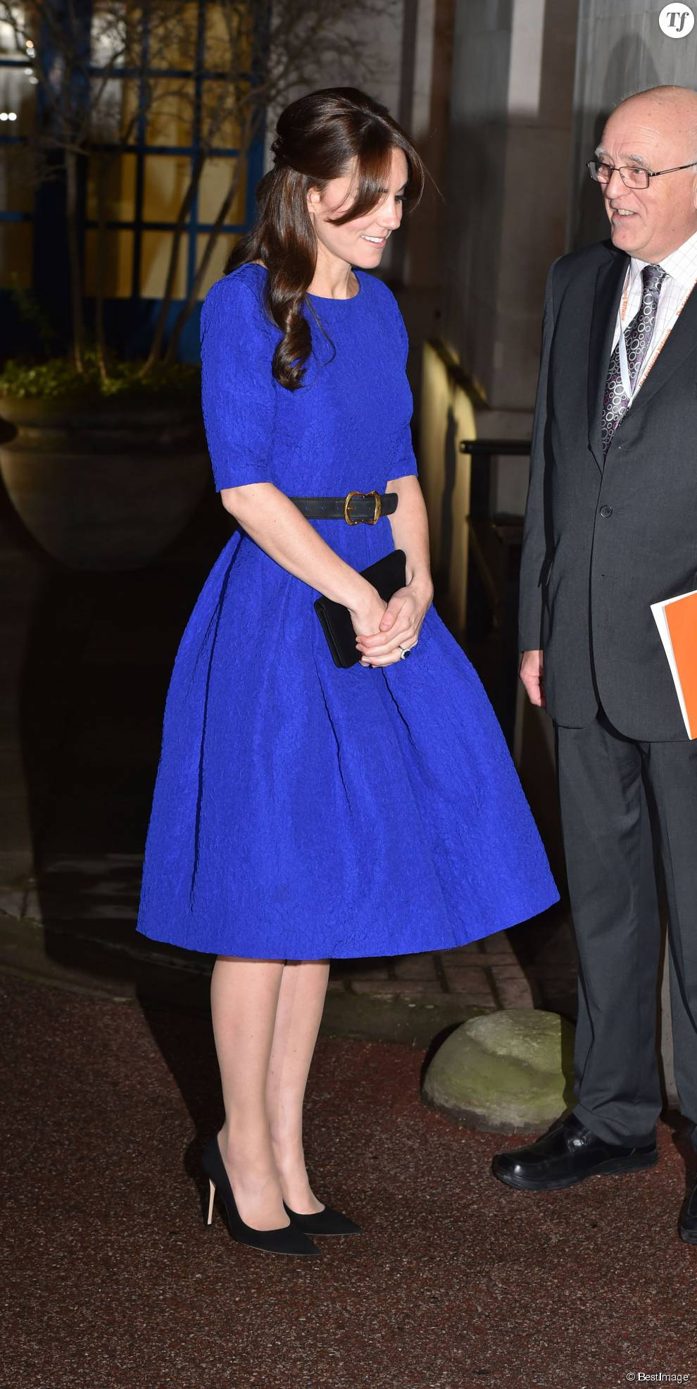 "Catherine Kate Middleton, la duchesse de Cambridge arrive pour assister à la remise des "" The Fostering Awards"" à la BMA House à Tavistock Square à Londres, le 17 novembre 2015."