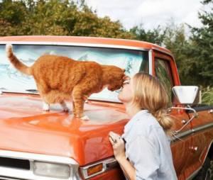 Girls and Their Cats, le superbe projet photo qui réhabilite la femme à chats