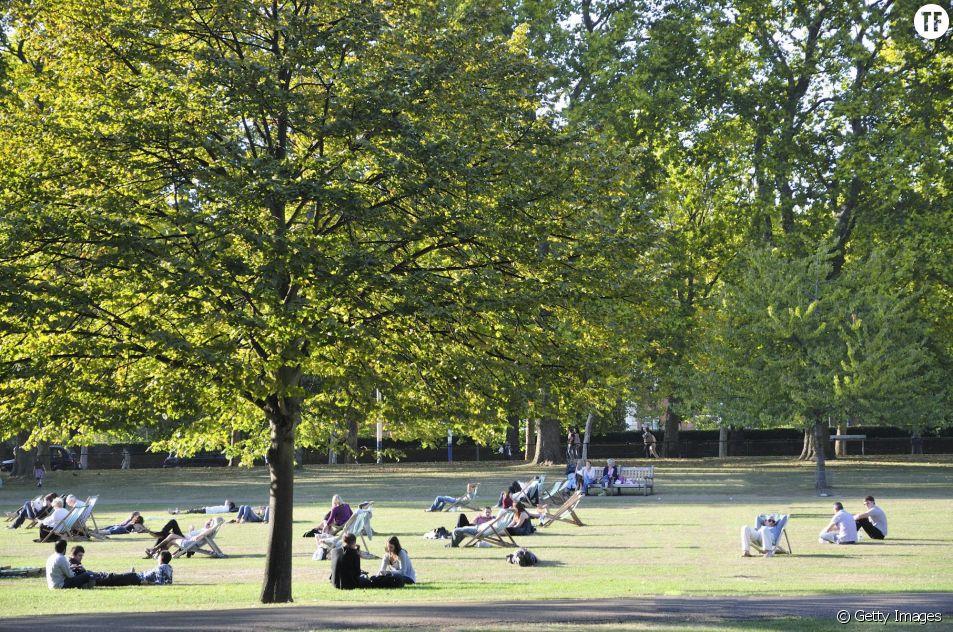 Des gens se relaxent à Hyde Park à Londres en plein été