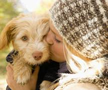 Les chiens nous rendent moins stressés, c'est scientifiquement prouvé