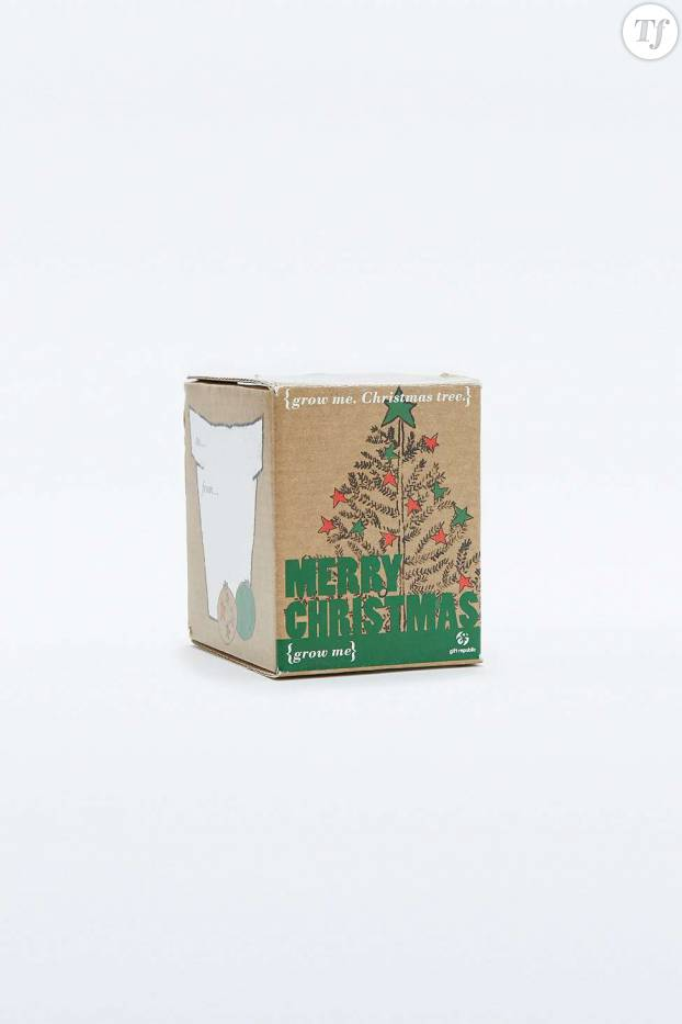 Kit sapin de Noël Grow Your Own Christmas Tree