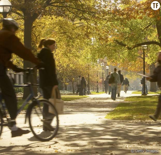 L'Université du Texas autorise ses étudiants à venir armés en classe