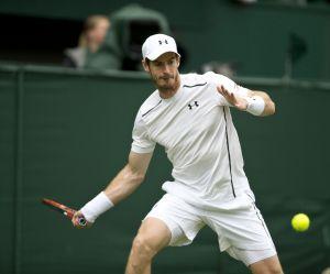 Wimbledon 2016 - Murray vs Raonic : heure, chaîne et streaming de la finale (10 juillet)