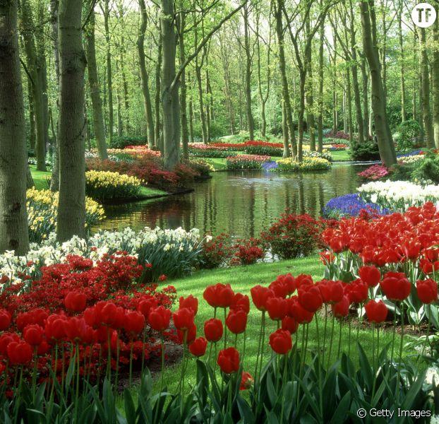 Les plus beaux jardins de fleurs blog de conception de maison - Les plus beaux van plan de maison du monde ...