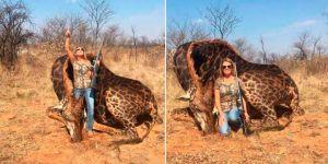 Une chasseuse américaine abat une girafe et s'attire les foudres des internautes