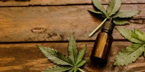 De plus en plus d'intoxications au cannabis chez les enfants en France
