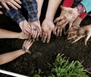 Du jardinage à la place des heures de colle : la bonne idée d'un collège parisien