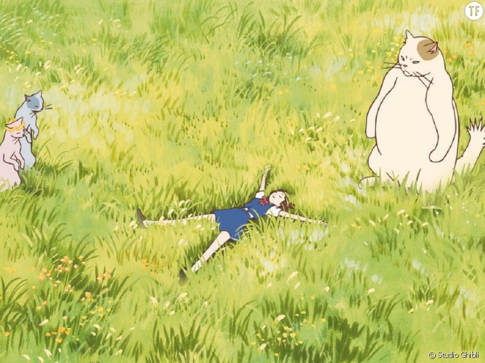 Dessins Animes Pour Enfants 8 Films Droles Et Poetiques A Voir En Vod Ou Netflix Terrafemina
