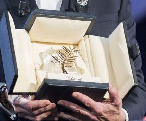 Cannes 2015 : Dheepan, Mon roi... calendrier et dates de sortie des films en compétition