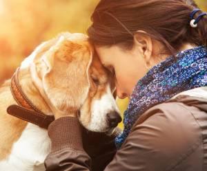 Votre chien ressent vos émotions, c'est scientifiquement prouvé