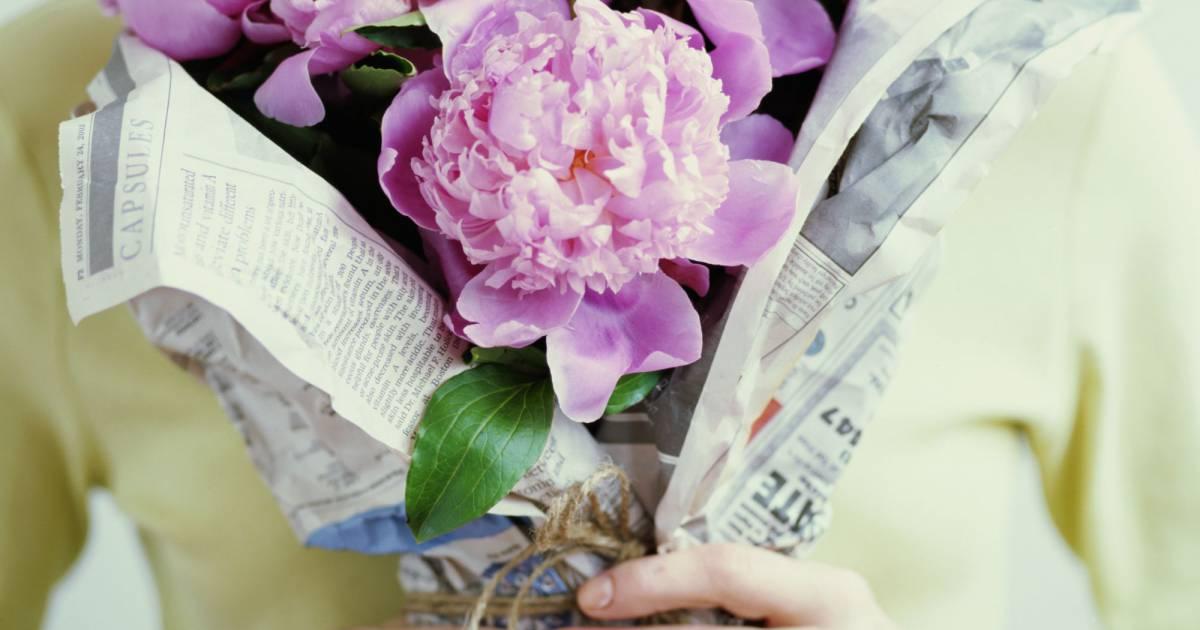 Offrir des fleurs sans faire du mal la plan te c 39 est for Offrir un bouquet