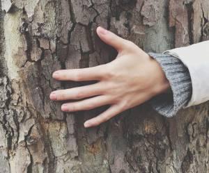 """""""Toucher du bois"""" pour un entretien pourrait être plus efficace qu'on ne le croit"""