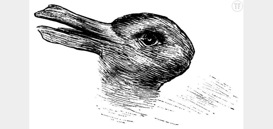 Lapin ou canard ? Une question très révélatrice sur les capacités du cerveau et la personnalité de chaque individu.