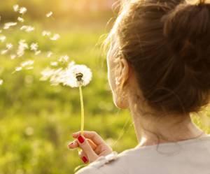 Le pissenlit : 5 raisons de se réconcilier cette mauvaise herbe magique