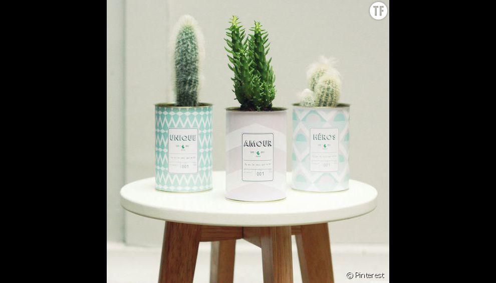 Idée de déco n°1 : des cactus dans des pots en fer