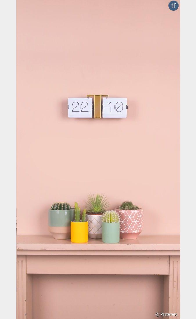Id e de d co n 2 des cactus dans des pots pastels et for Idee de job