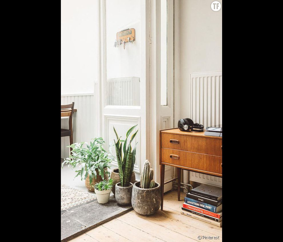 Idée déco n°6 : des cactus en pot à même le sol