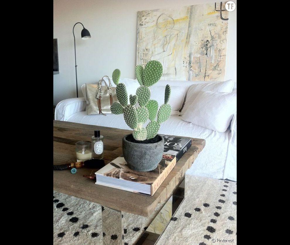 Idée déco n°16 : un cactus sur la table du salon - Terrafemina
