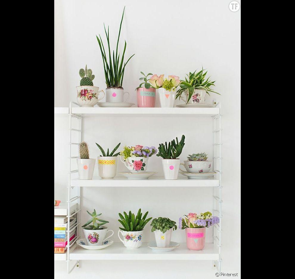 Id e d co n 16 des cactus dans des tasses en porcelaine for Photo de deco