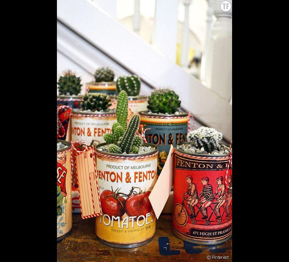 Idée déco n°17 : des cactus dans des boîtes vintage