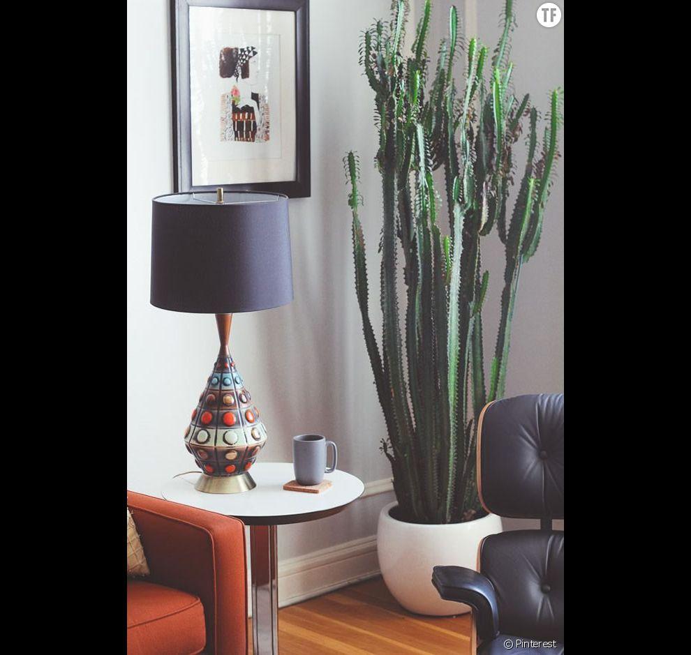 Idée déco n°18 : un cactus géant dans un coin du salon ...