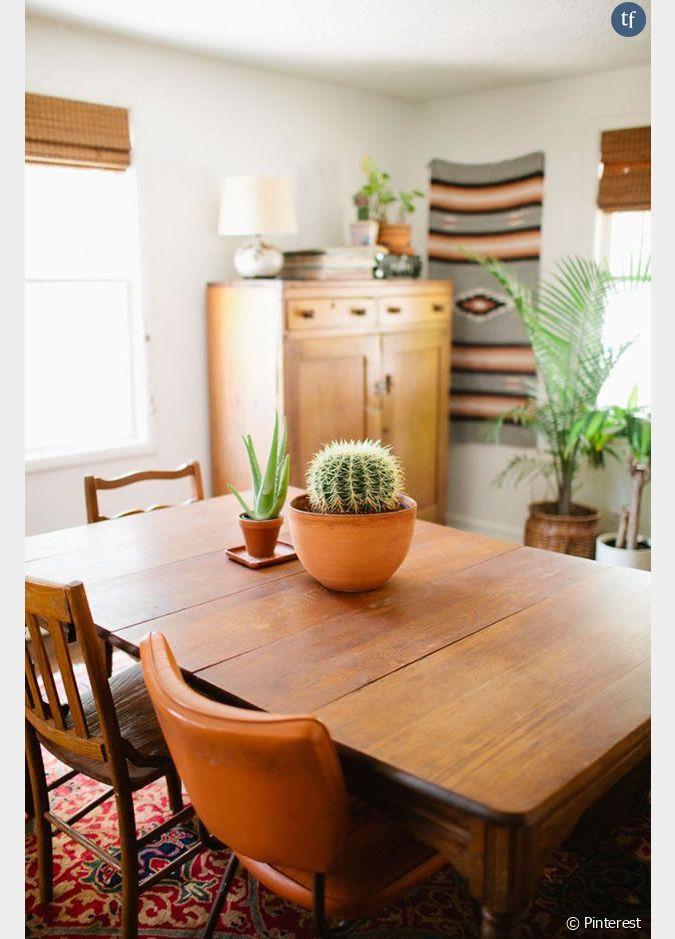 id e d co n 19 des cactus sur la table de la salle manger. Black Bedroom Furniture Sets. Home Design Ideas