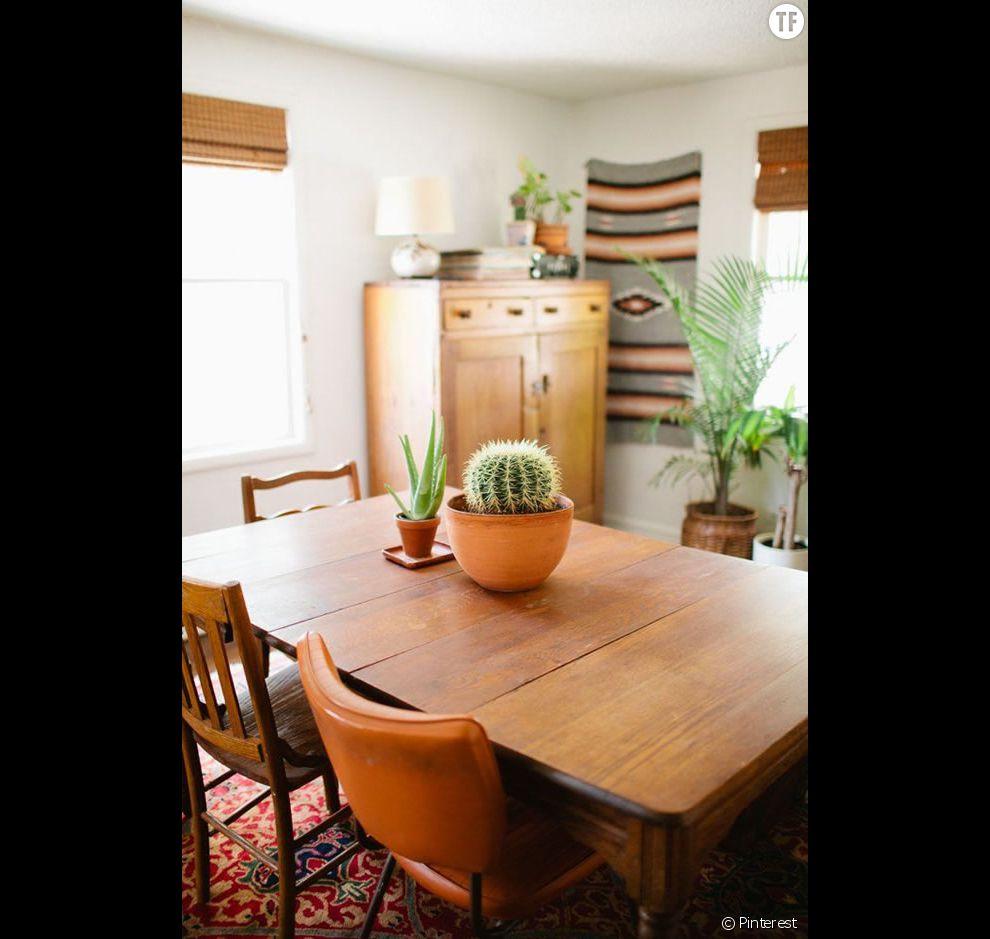 Des Idées Déco Pour Votre Balcon: Idée Déco N°19 : Des Cactus Sur La Table De La Salle à