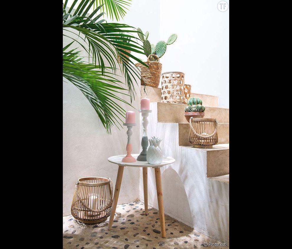 Idée déco n°24 : des cactus pour habiller un escalier - Terrafemina