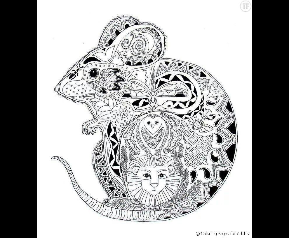 Une petite souris terrafemina - Dessin petite souris ...