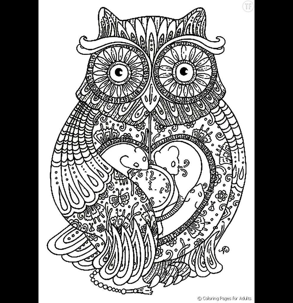 Coloriage anti stress hibou - Anti coloriage ...