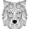 Une gueule de loup