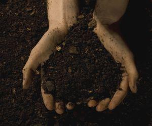 Ils mangent du sable ou des éponges : l'étrange maladie de pica