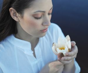 Ces plantes magiques de la médecine chinoise pour purifier son corps et sa peau