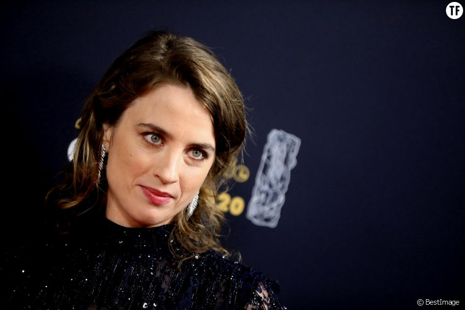 """Tu fous la gerbe"", ""Omerta"" : ce directeur de casting menace Adèle Haenel"