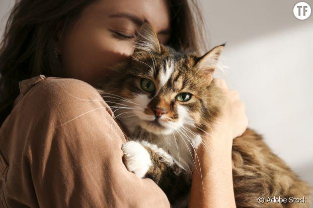 Chats et chiens, des compagnons de bien-être.