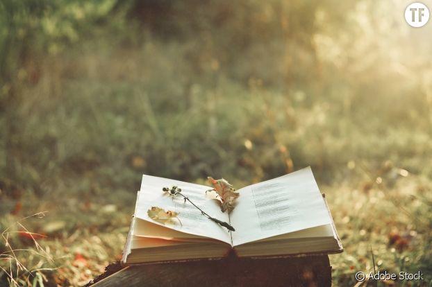 """La poésie, expression """"pure"""" des émotions."""