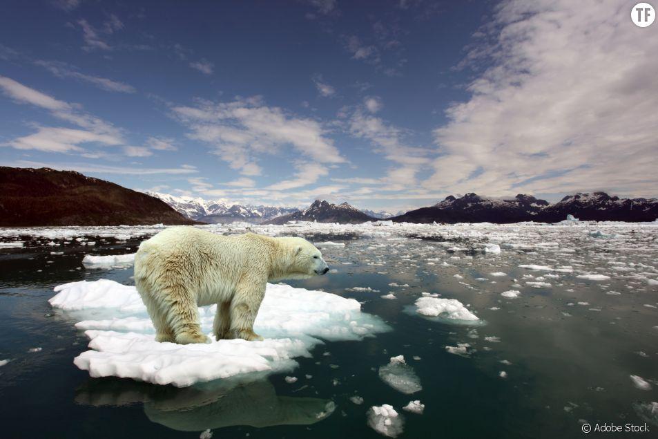 Pourquoi 2021 est une année cruciale pour (enfin) freiner la crise climatique