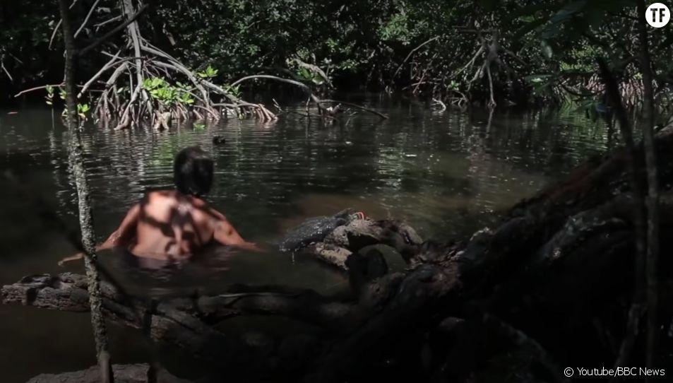 """Une forêt """"réservée aux femmes"""" menacée par la pollution en Indonésie"""