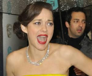 César 2013 : Marion Cotillard, beaucoup d'espoirs pour rien ?