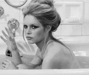 Brigitte Bardot a perdu son chat Rontonton