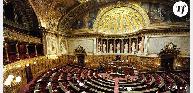 Mariage gay : le meilleur du pire des arguments entendus au Sénat - vidéo
