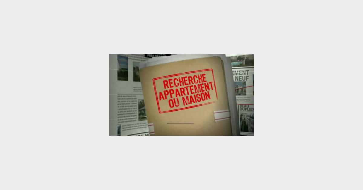 Replay M Recherche Appartement Ou Maison