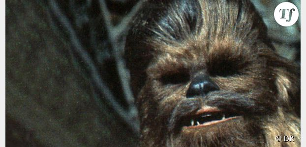 Star Wars 7 : Harrison Ford insulte Chewbacca chez Jimmy Kimmel - Vidéo