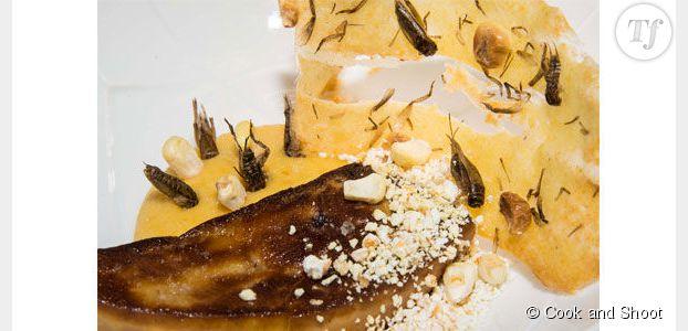 Cuisiner des insectes : la recette audacieuse du chef David Faure