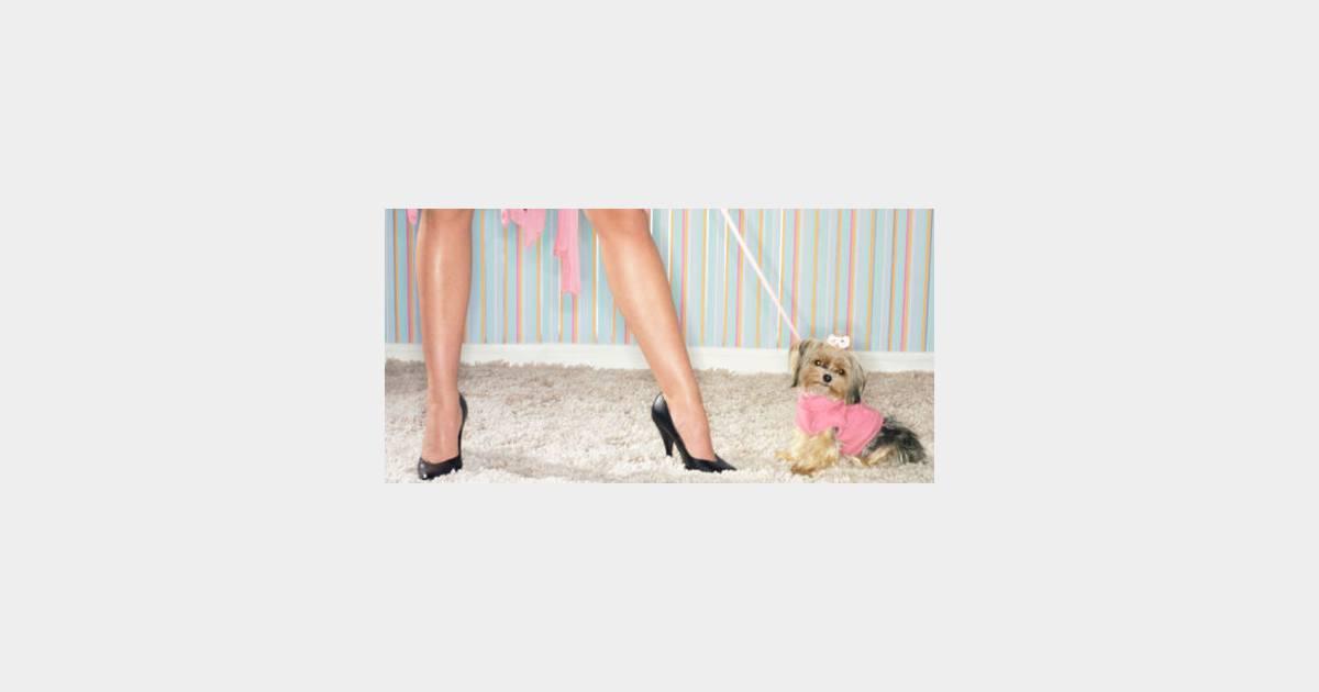 bon plan trouver une nounou pour son chien terrafemina. Black Bedroom Furniture Sets. Home Design Ideas