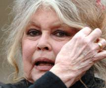 Aïd-el-kébir 2013 : Bardot repart en croisade contre les sacrifices de mouton