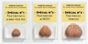 """Une """"paire de couilles"""" à Hollande : les écolos retirent leur campagne"""
