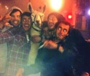 Serge le lama: Mathieu, un des ravisseurs, raconte leur nuit de folie